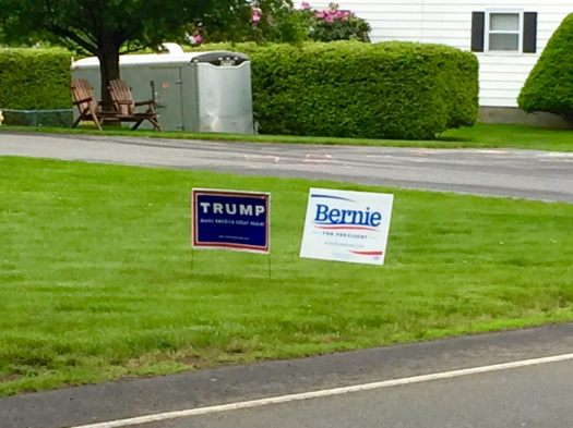 lawn signs 2016